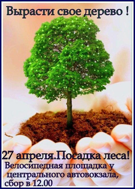 """27 апреля.""""Вырасти свое дерево"""" Общественное Движение """" Позитив 63"""" г.Тольятти"""
