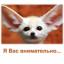 irina_63r